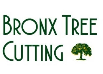 Bronx Tree Cutting: Tree Cutting, Tree Removal